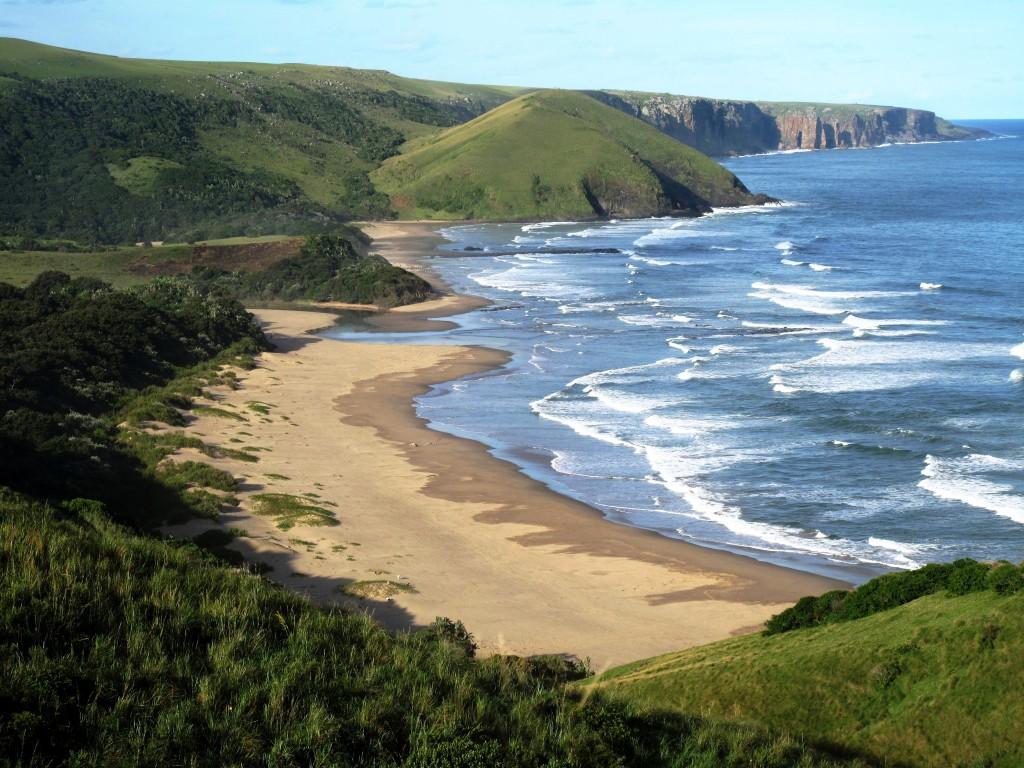 Wild Coast #3
