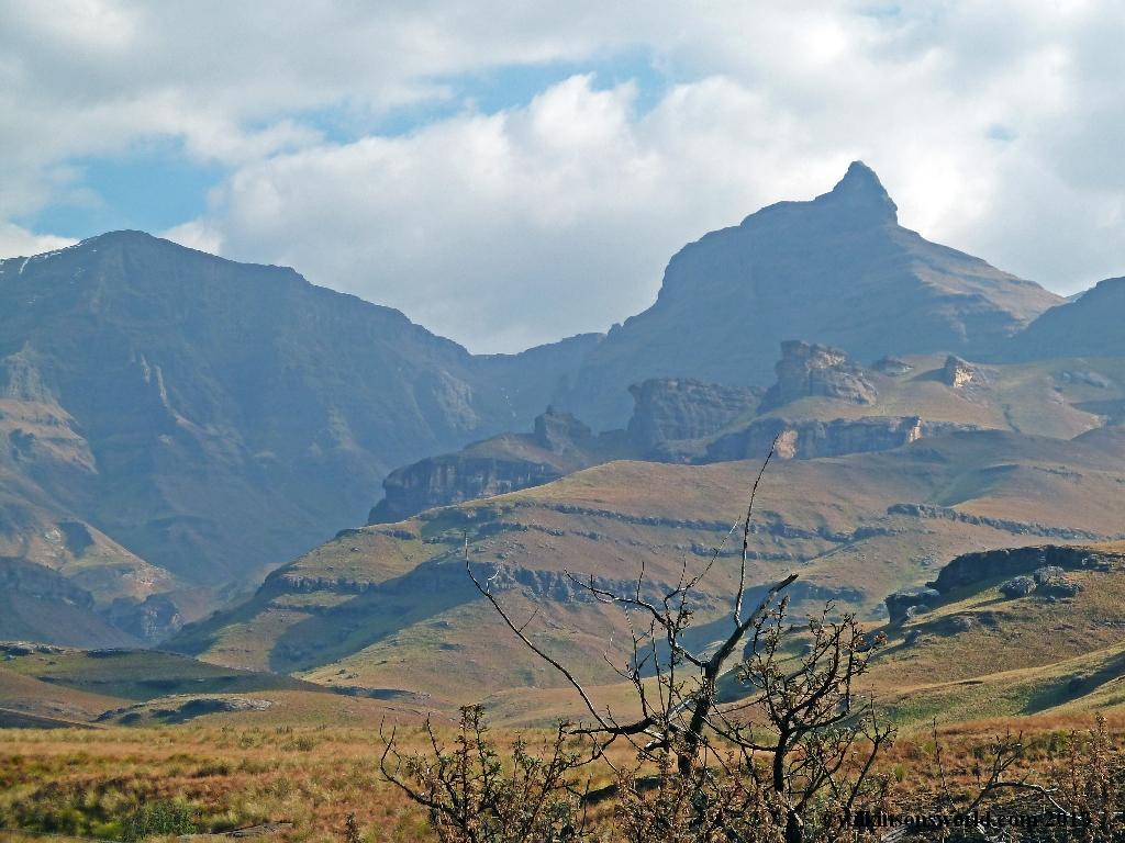 Rhino's Peak #1