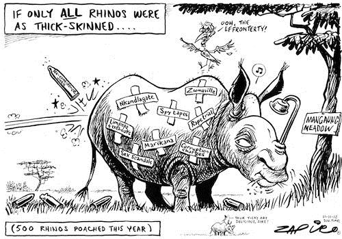 121111 — MANGAUNG Meadow published in Sunday Times on 11 Nov 2012