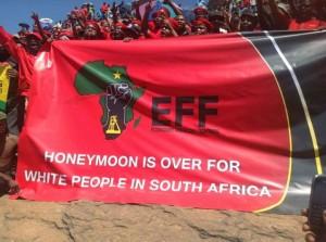 EFF plackard