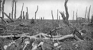 Somme Battle#6