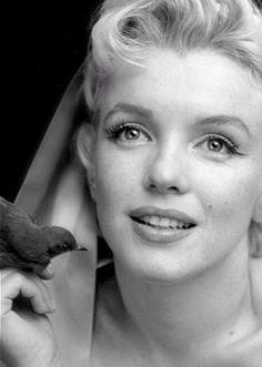 Marilyn Monroe#3