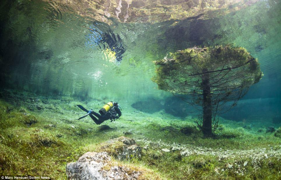 Green Lake#1