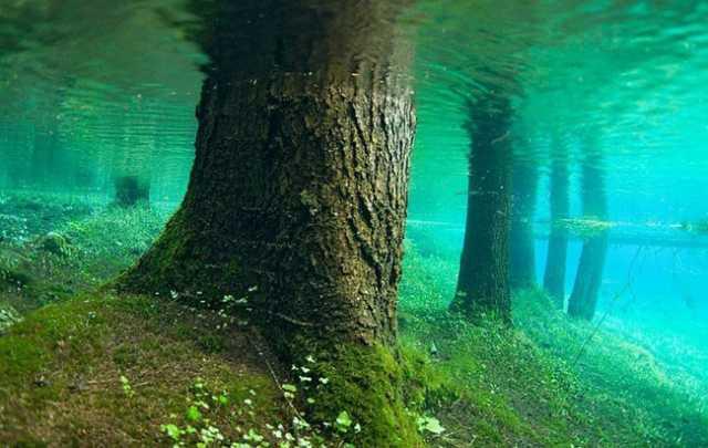 Green Lake#4