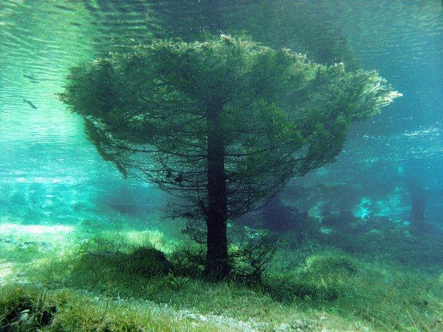 Green Lake#9