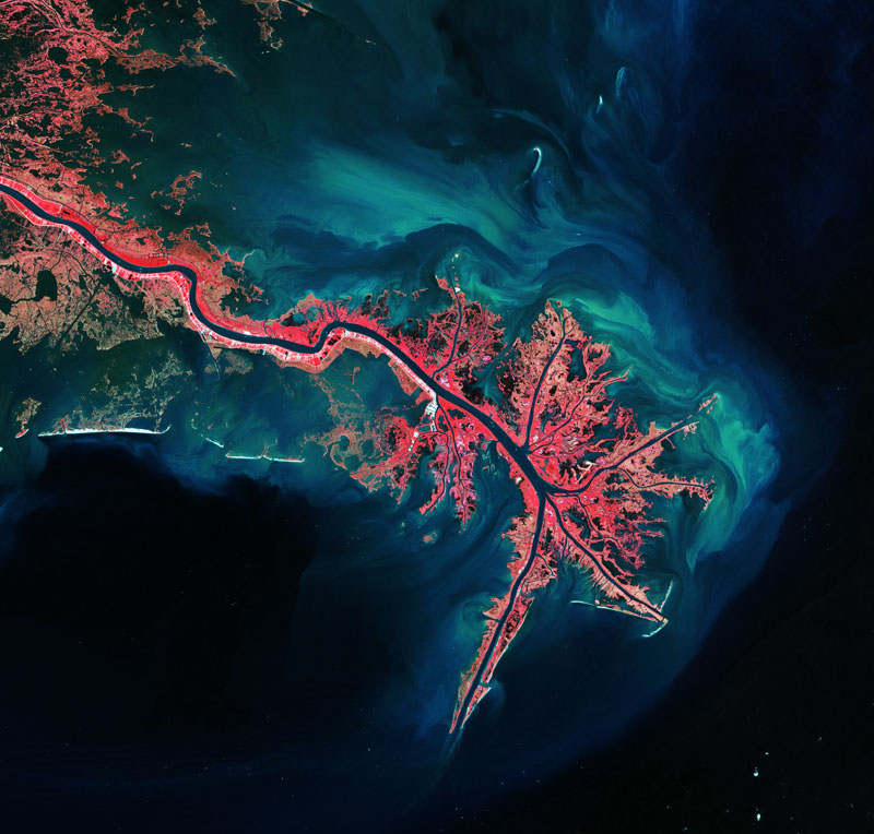 Earth's Rich Tapestry#17 Mississippi River Delta