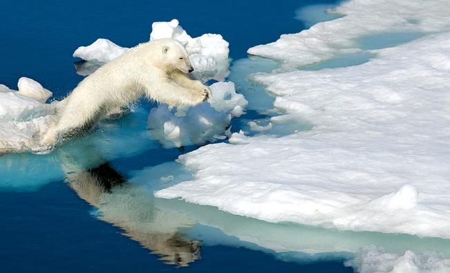 Modern Polar Expeditions#12