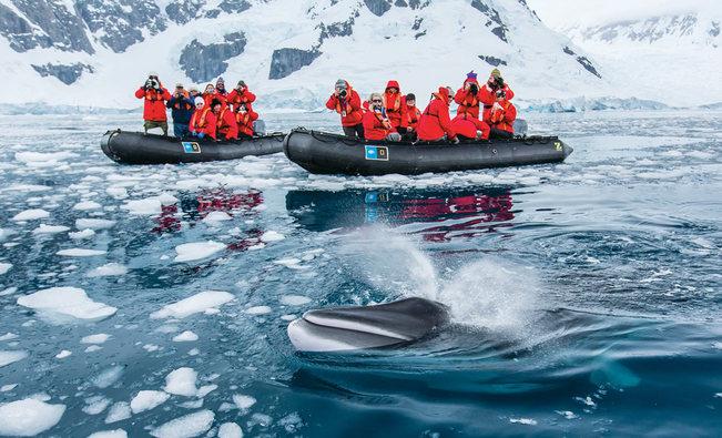Modern Polar Expeditions#5