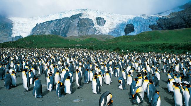 Modern Polar Expeditions#6