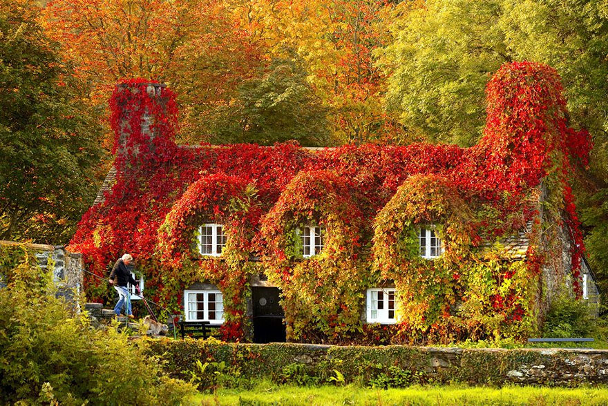 BONT TEAROOM IN LLANTRWST, NORTH WALES IN AUTUMN