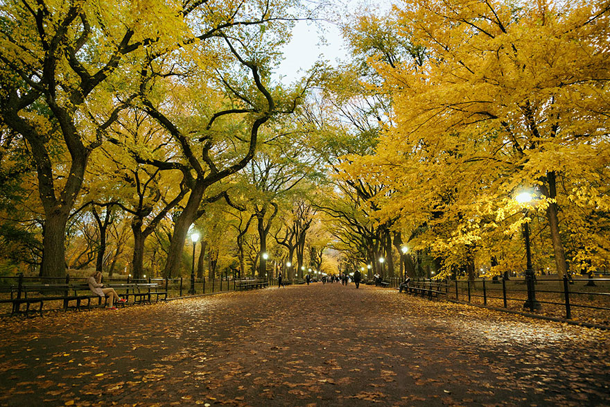 POET'S WALK, CENTRAL PARK, NEW YORK, USA IN AUTUMN