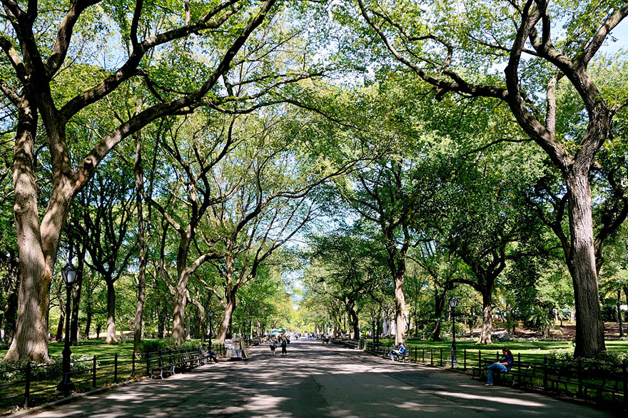 OET'S WALK, CENTRAL PARK, NEW YORK, USA IN SUMMER