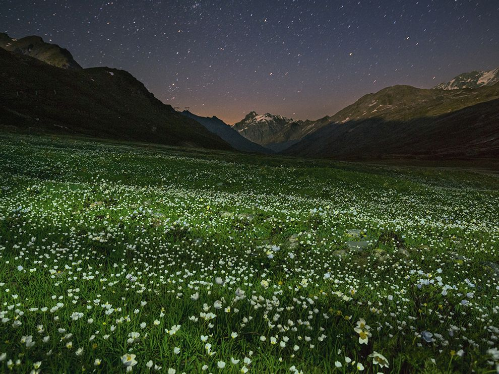 Summer night falls over an alpine meadow stippled with wildflowers in Italy's Gran Paradiso National Park. In a busy country on a crowded continent, Gran Paradiso's unspoiled landscape is an arcadian oasis