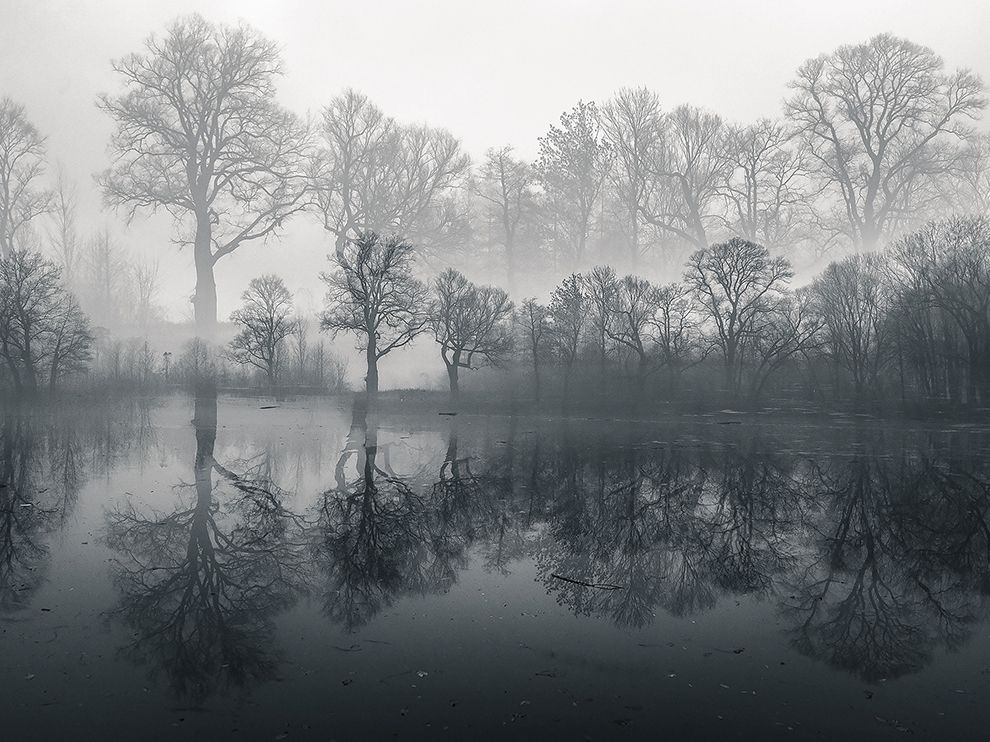 Misty morning fog over a pool in Poland