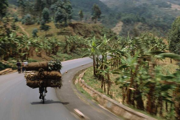A cyclist hauls a massive load uphill near Bujumbura, Burundi. Bikes are traditionally used to haul goods into the city.