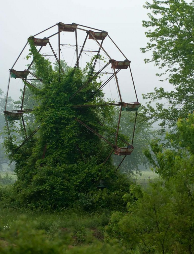 An abandoned ferris wheel being engulfed by lush vegetation