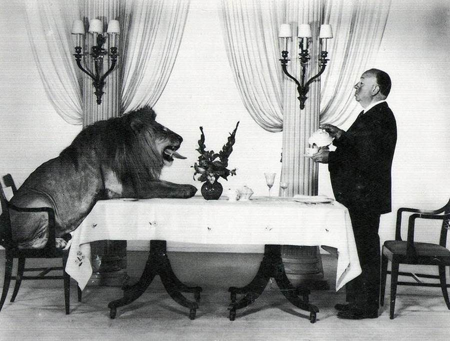 1957. Alfred Hitchcock serving tea to Leo, the MGM lion
