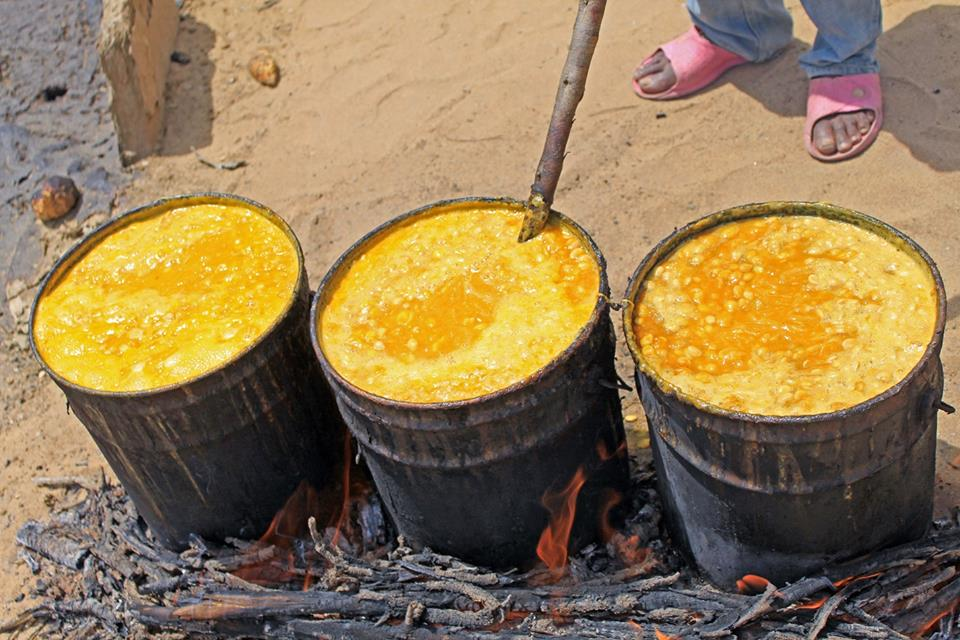 Cooking the !Narra. This pumpkin is very rich in protein and vitamins and is eaten by all and sundry, but is the main food source of the Topnaar people