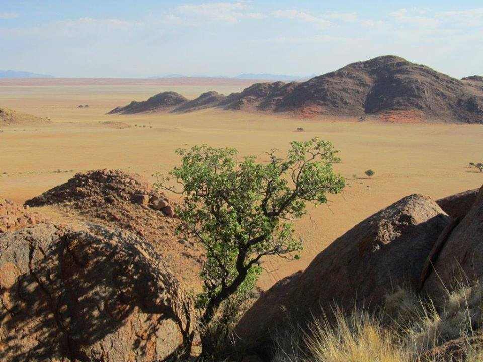 Namib vista at Farm Kanaan in southern desert.