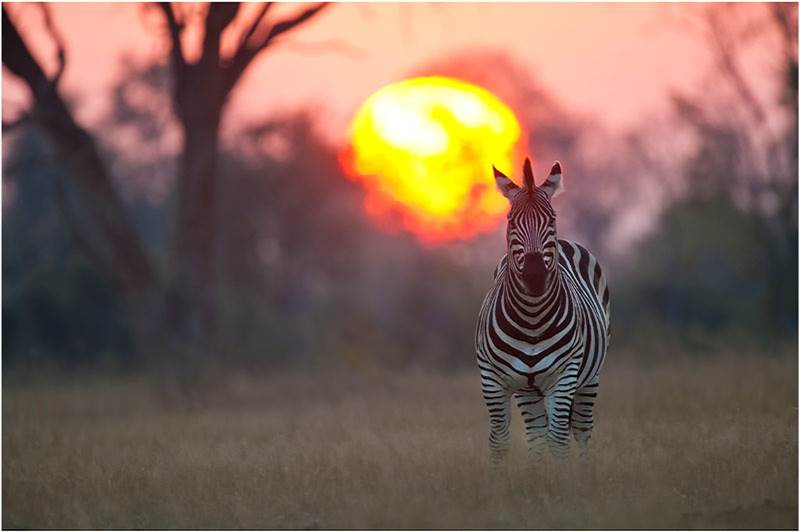 Sunset in South Africa#28