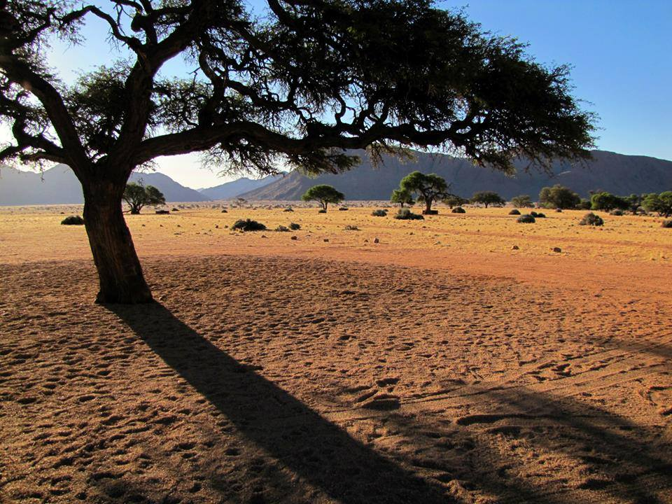 The well-equipped camping site at Sesriem, near Sossusvlei.