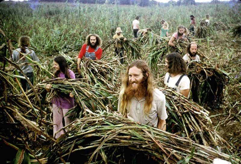 #28hippie-commune-harvest#28