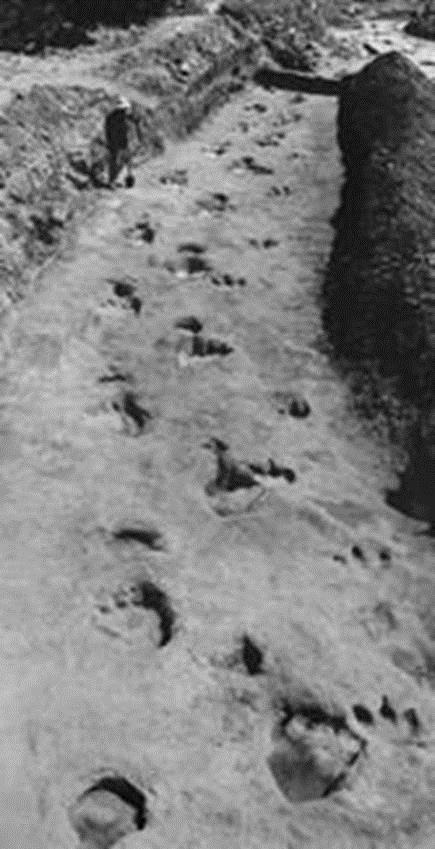In the Paluxy River, in Glen Rose, Texas, they found human AND dinosaur footprints in the clay