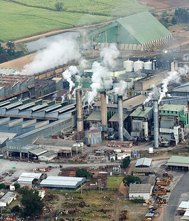 Triangle's sugar refinery in Zimbabwe