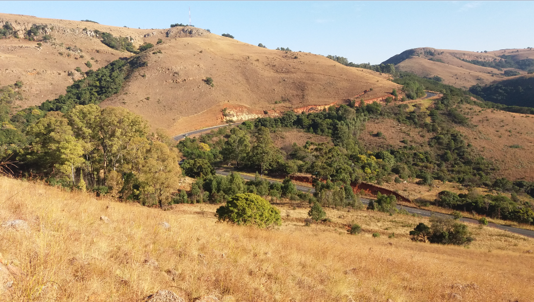 View of the Skurweberg Pass and the Pongola Express hidden by the trees