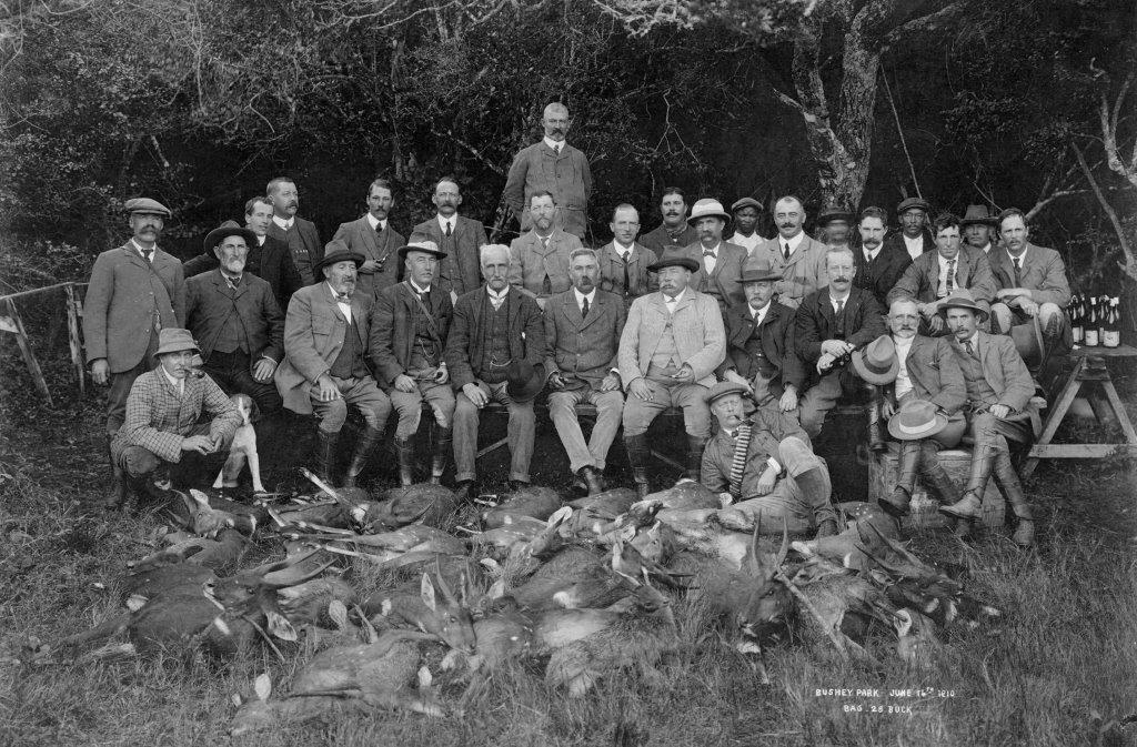 Hunt at Bushy Park