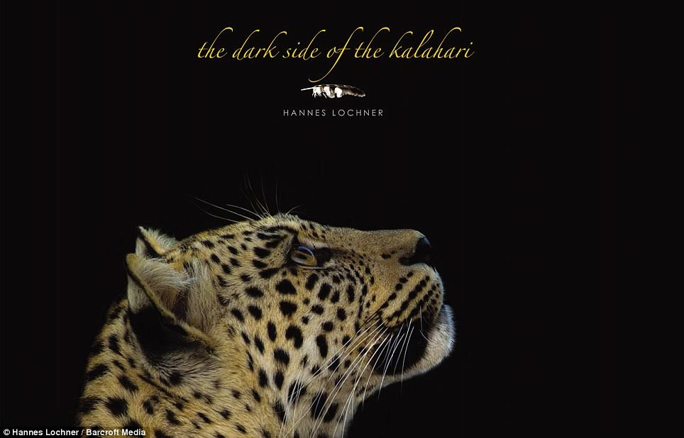 The Dark Side of the Kalahari