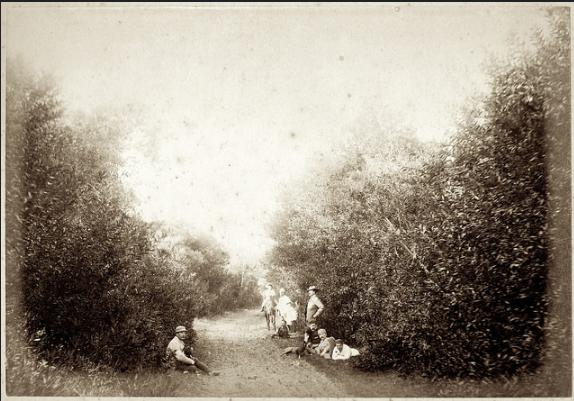 Howard with friends in Port Elizabeth in 1886