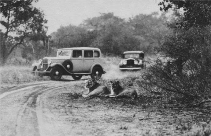 Game viewing in the1930s as per Sanparks archives