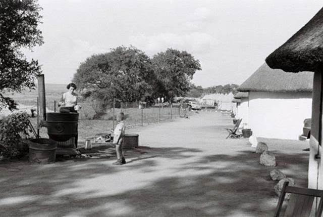 letaba-huts-where-the-current-restaurant-is-located-july-1954