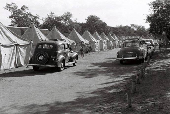 letaba-tents-erected-during-the-winter-july-1954