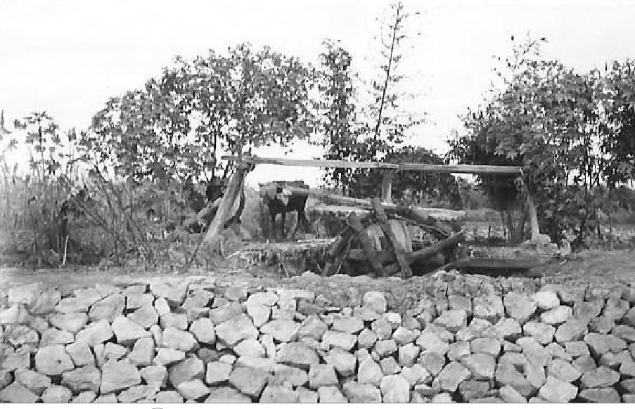 harry-clifford-mccleland-in-egypt-during-ww26-water-wheel