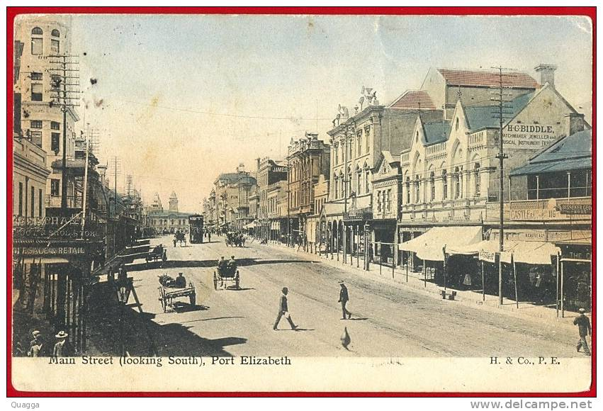 main-street-looking-south-port-elizabeth-a-hallis-co-card