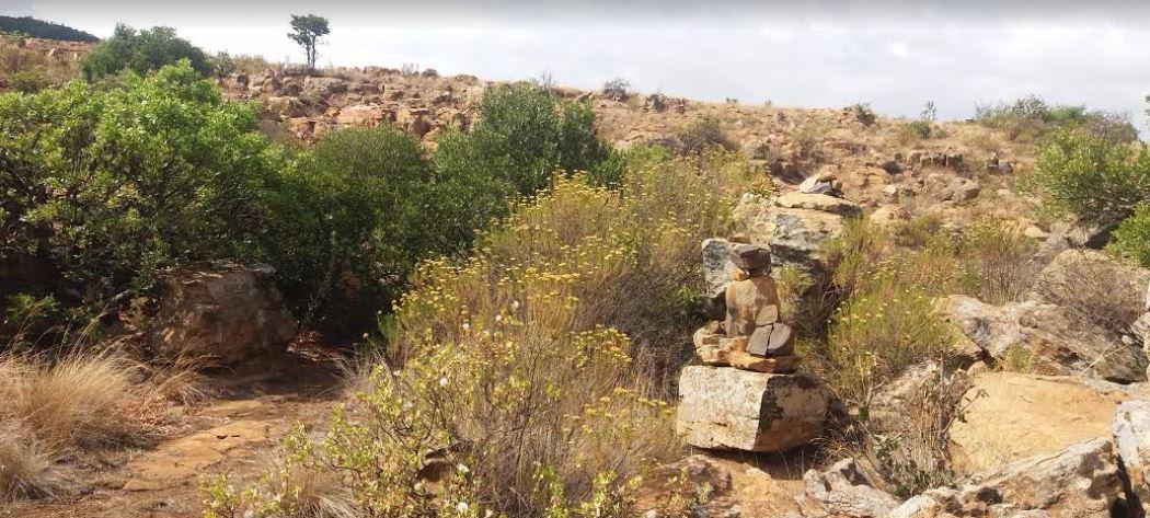 suikerboschfontein-oct-201628