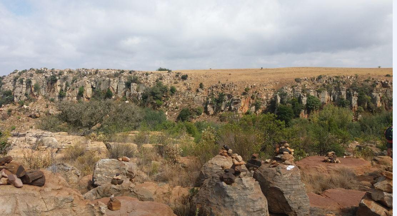 suikerboschfontein-oct-201631