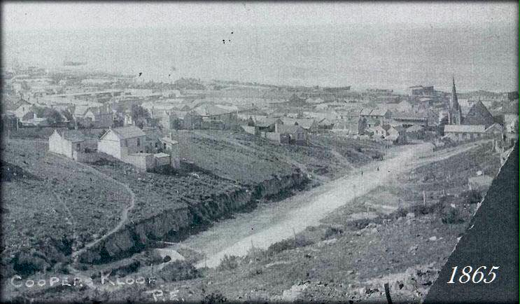 Albany Road in 1865