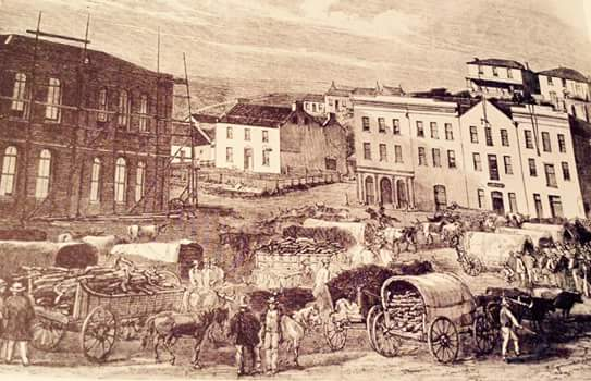 the-city-hall-being-constructed-1858-186202