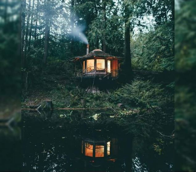 A cabin in the woods in Washington State