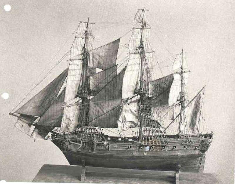 Zeepaard in 1819