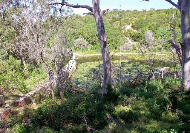 Frames Reservoir
