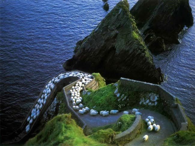 A morning traffic jam in Ireland