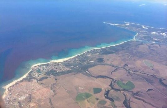 Aerial view of Summerstand and Cape Recife today showing that the dunes have been by vegetation and suburbs