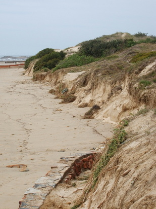 Dunes being eroded at Millers, from the end of the sea wall