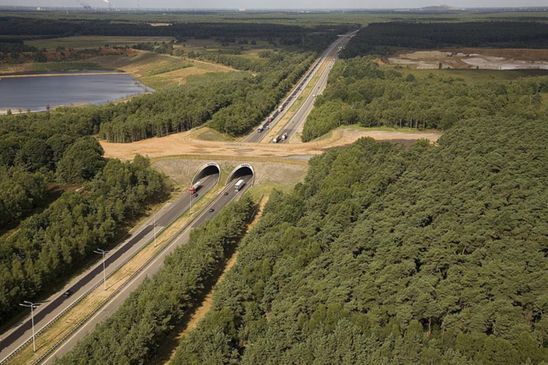 Ecoduct Kikbeek over the E314.