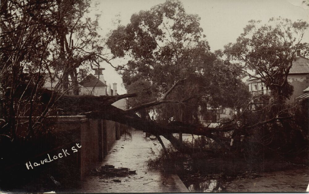 Storm damage in Havelock Street in 1913