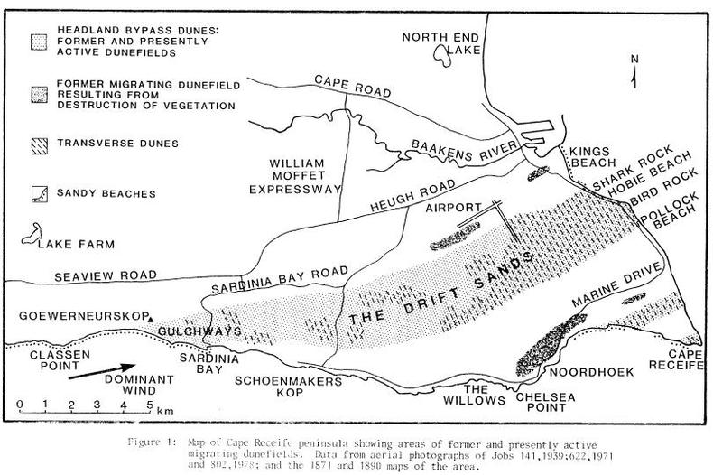 Map showing the dune field systems in 1890. Summerstrand & Humewood were just one big sand dune